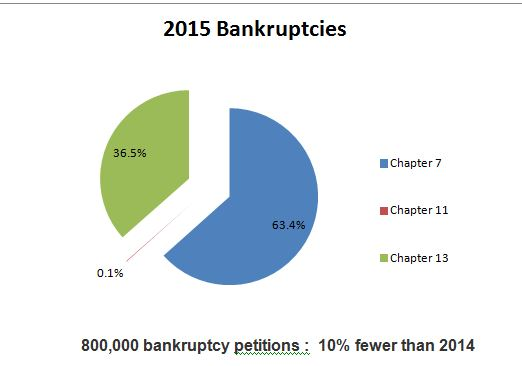 Bankruptcy Stats 2015 - full year - Consumer