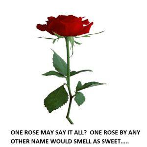 Discretionary Spending Valentine's Day