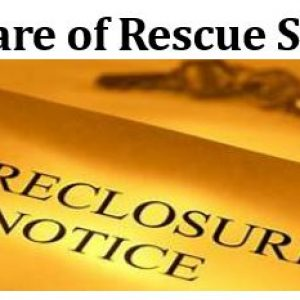 REscue-Scams