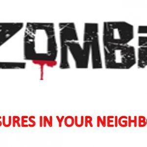 Zombie foreclosures 2